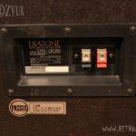Diatone_DS-30B_0013